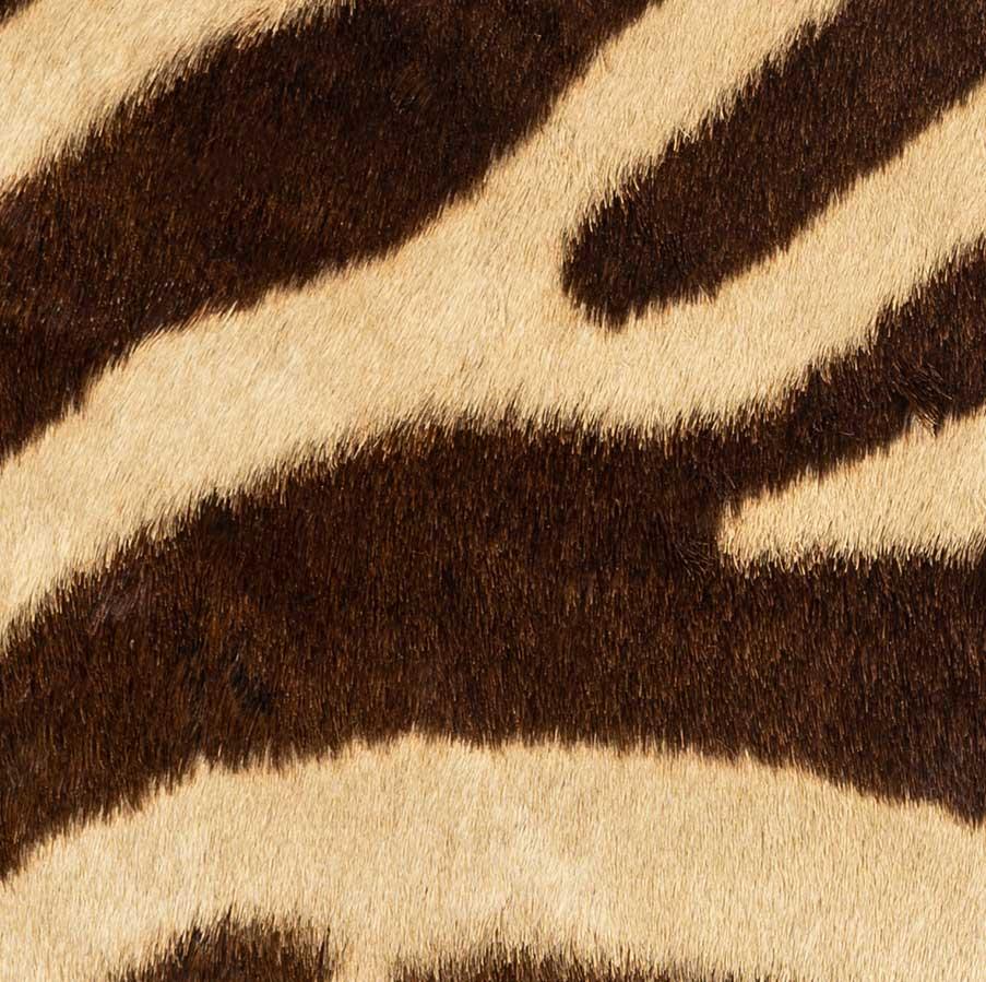 Cuscini Zebrati.Cuscino Zebrato Alps By Schirato